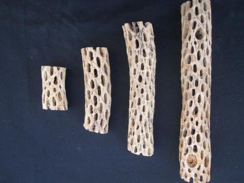 Natural Choya Wood (3″-12″)