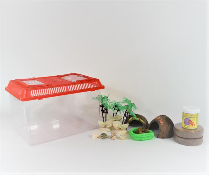 Complete hermit crab terrarium kit, large