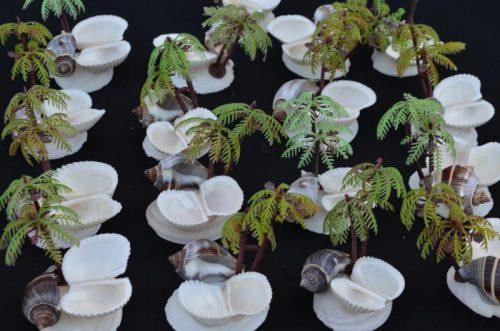 Shells palm feeder
