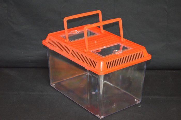 Rectangular plastic terrarium, large