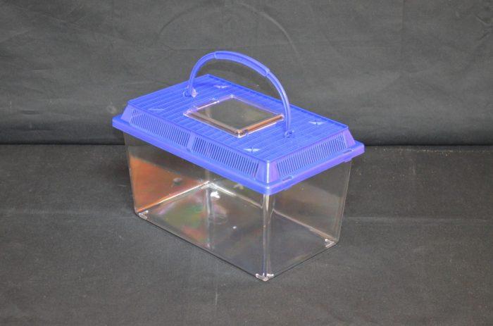Rectangular Plastic terrarium, medium