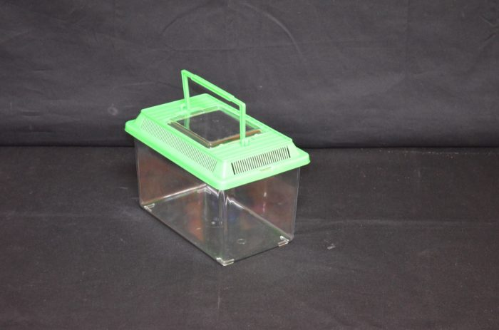 Rectangular Plastic terrarium, small