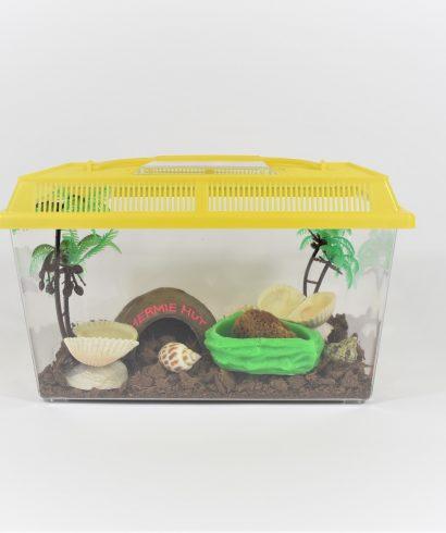 Complete hermit crab terrarium kit, medium