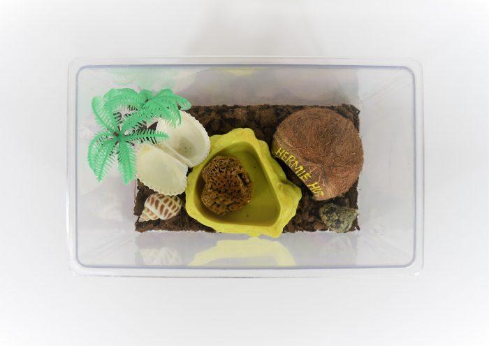 Complete Hermit crab terrarium kit, small